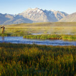 One man fly fishing on the Owens River at sunrise with the Sierra Nevada Mountains in distance